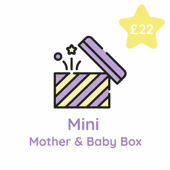 Mini Mother Baby Surprise Box